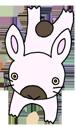 ウサギ(兎)