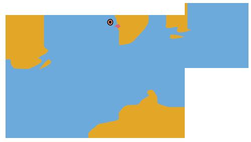 鳥(始祖鳥)