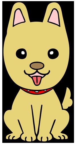 イヌ(犬)