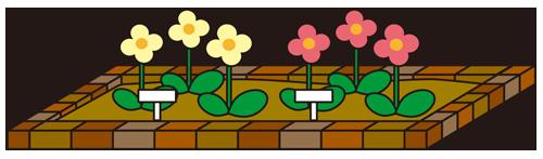 花壇(ガーデニング)