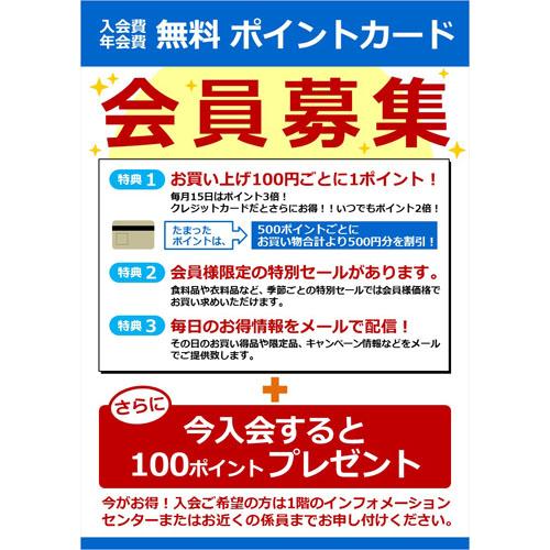 チラシ(会員募集)(A4・タテ)